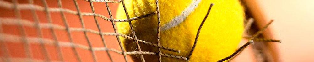 Športne stave stavni-nasveti7